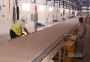 gypsum plant cartongesso drywall
