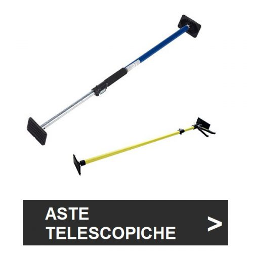 Aste telescopiche
